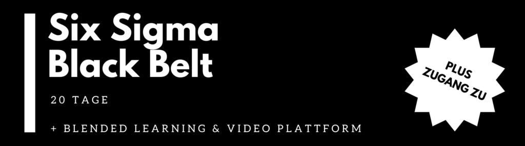 Six Sigma Black Belt Training Ausbildung (20 Tage)